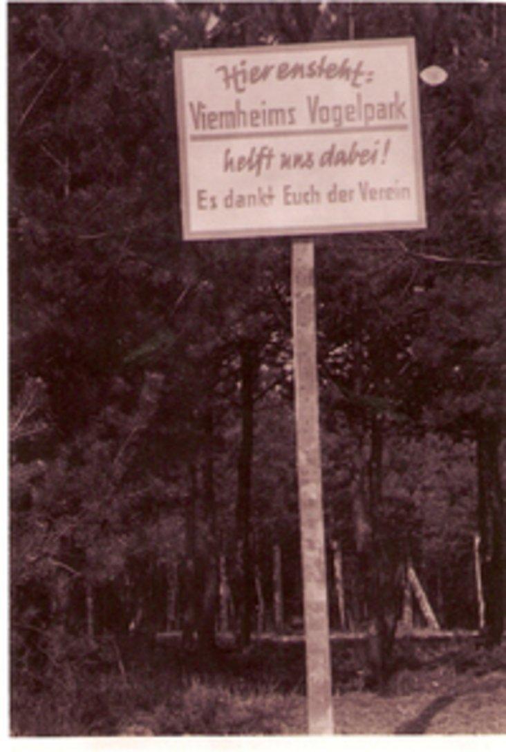 Geschichte_1960